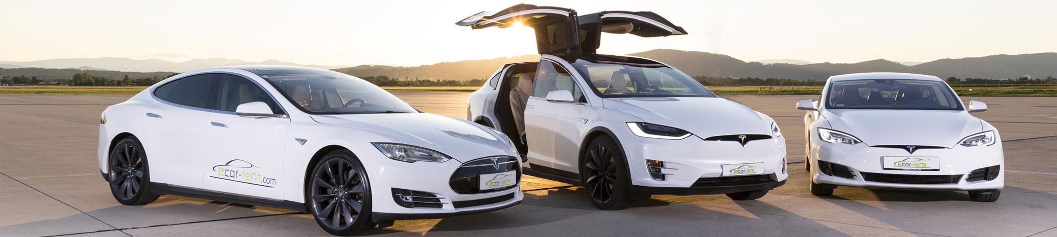 Rent A Tesla >> Rent A Tesla Ecar Rent Com
